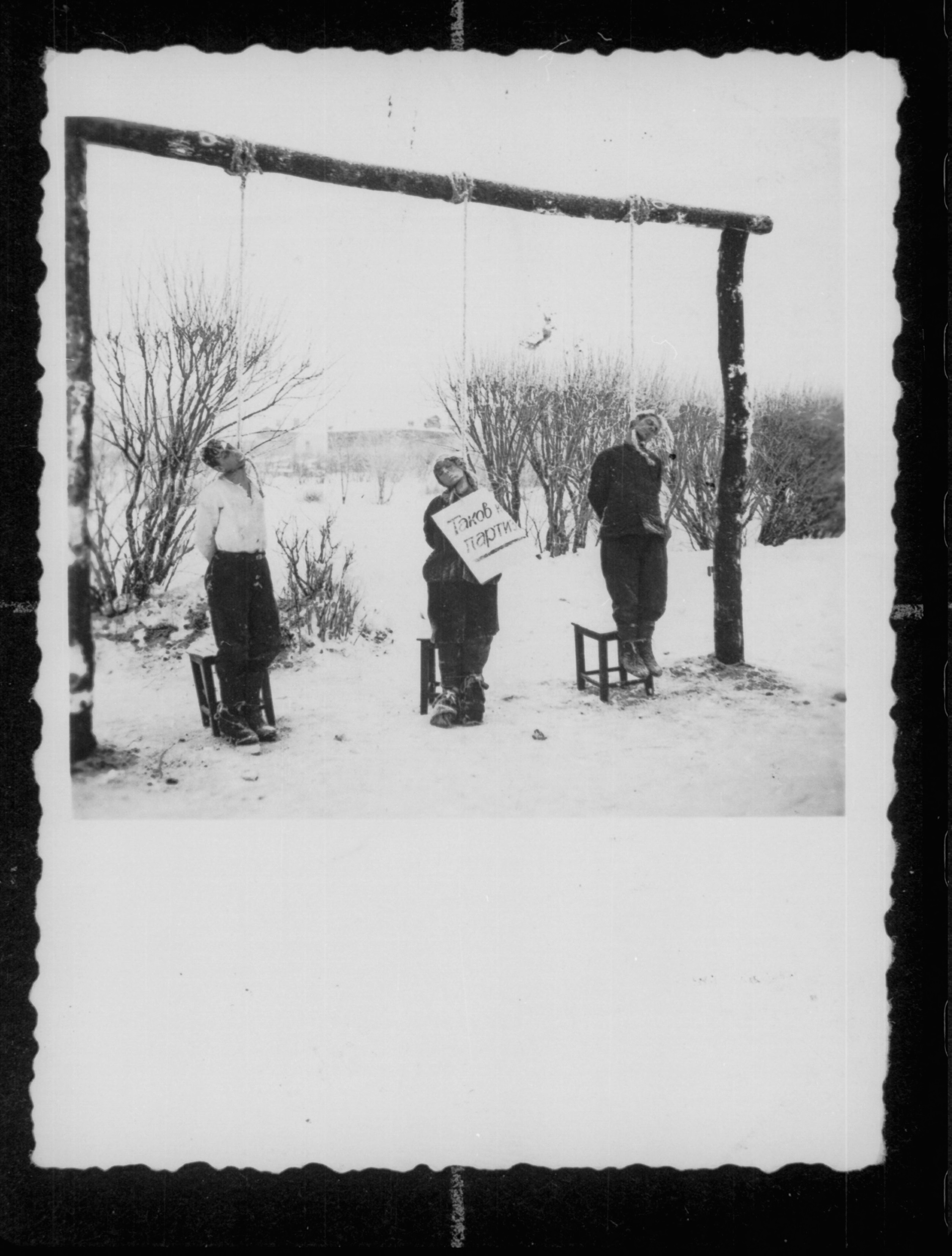 Het originele bijschrift: Partizanen aan de lus bij Wite