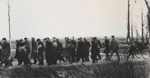 Groep Nederlandse mannen onder begeleiding van Duitse bewakers