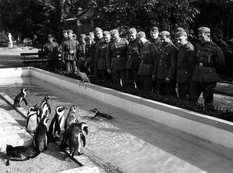 Duitse soldaten in Artis in mei 1940
