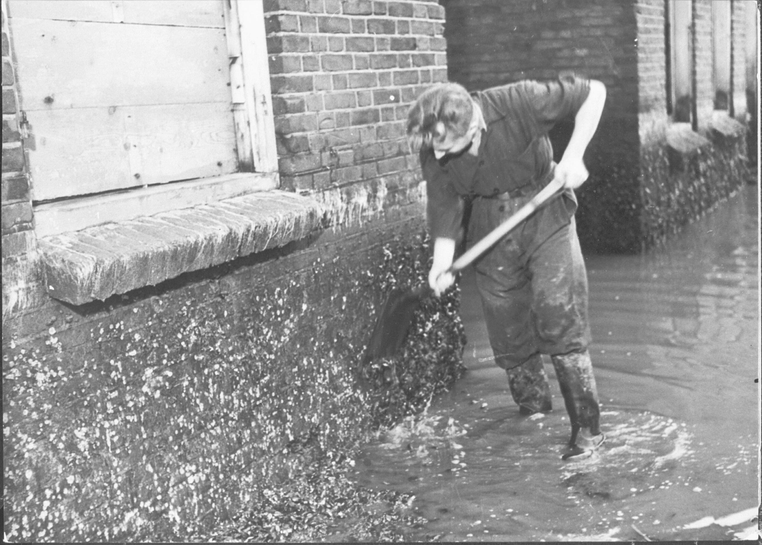 Mossels aan huizen op Walcheren