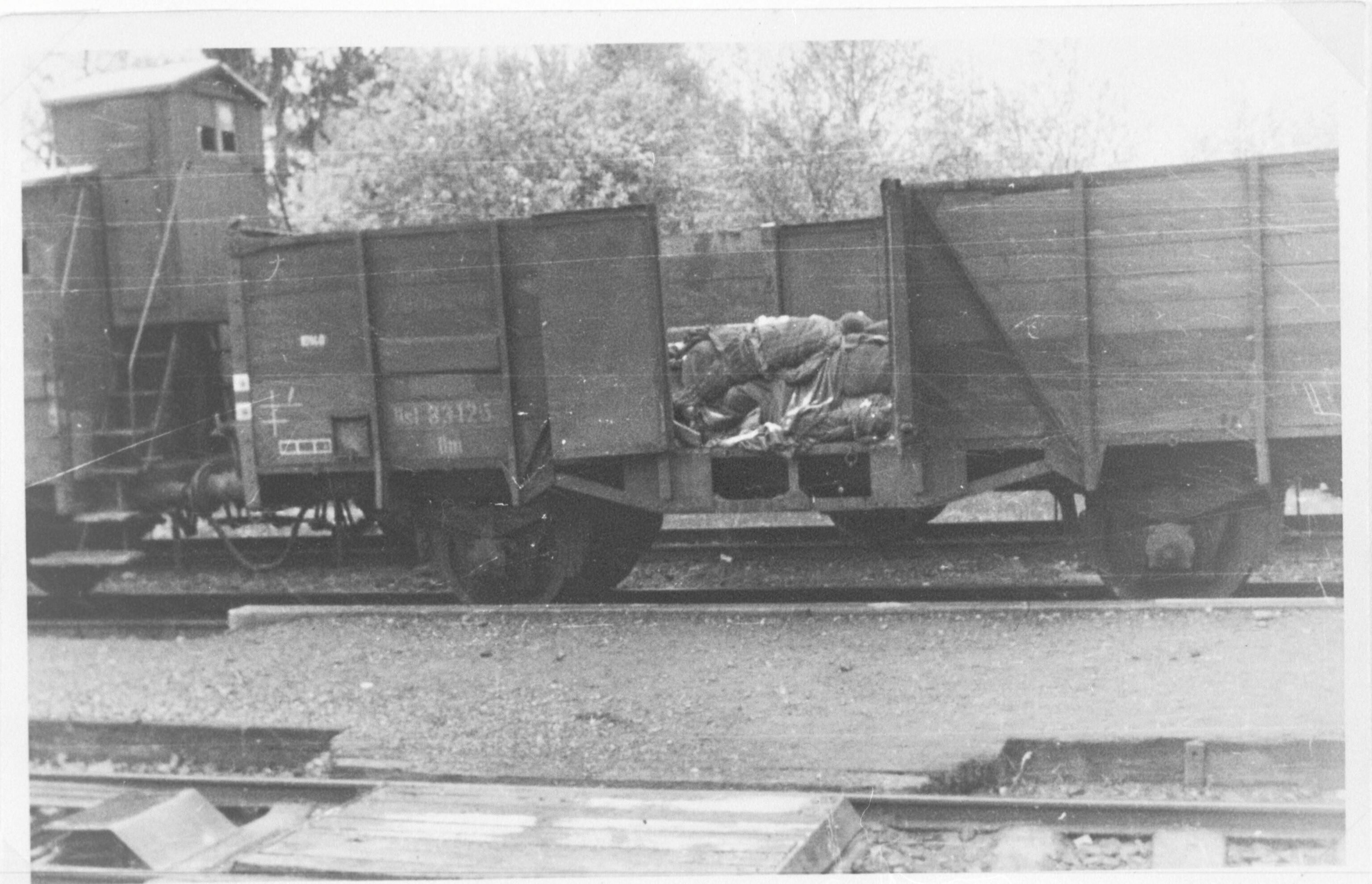 Treinwagons met doden bij Kamp Hurlach